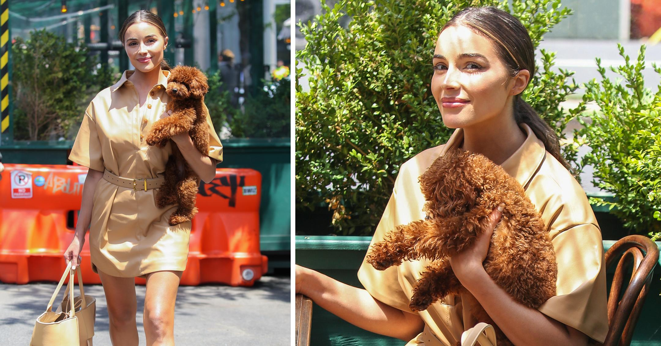 olivia culpo seen with puppy while leaving gemma restaurant in nyc